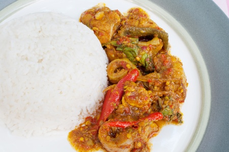Fried catfish spicy with rice on ceramic plate photo