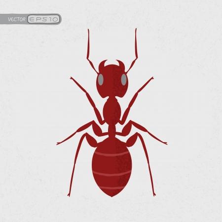antrey: Red ant , eps10 vector format Illustration