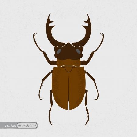 Hirschkäfer, dem größten Käfer, eps10 Vektor-Format Vektorgrafik