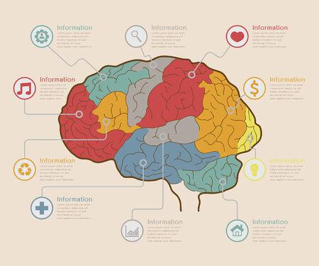 elementi: Infografica elementi, concetto Cervello, formato vettoriale eps10 Vettoriali