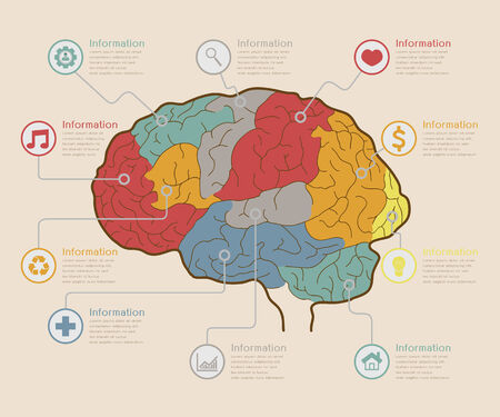 vector elements: Infographic Elements , Brain concept , eps10 vector format