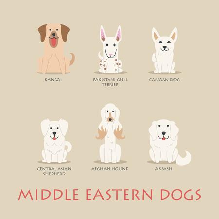 afghane: Set nah�stliche Hunde, eps10 Vektor-Format