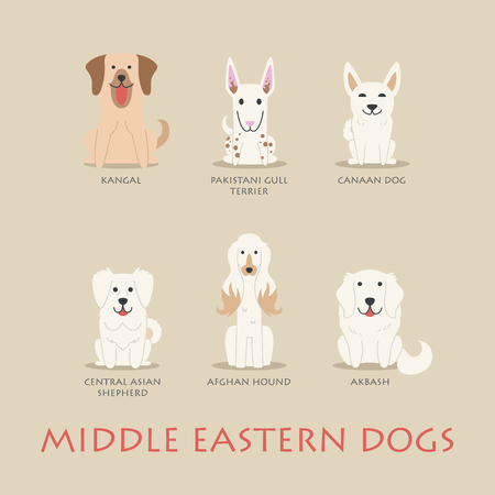 cartoon puppy: Set of middle eastern dogs , eps10 vector format