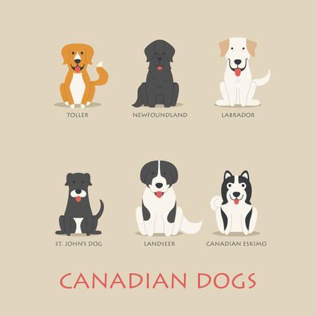 terranova: Set di cani canadesi Vettoriali