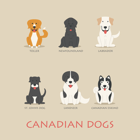 dogs: Set of Canadian dogs