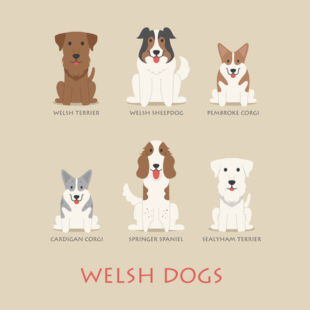 dog sitting: Set of welsh dogs