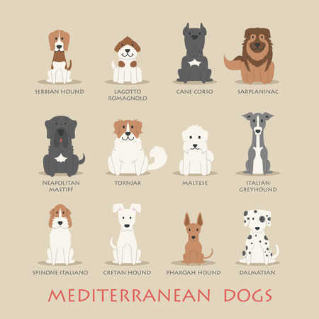 dogs: Set of Mediterranean dogs Illustration