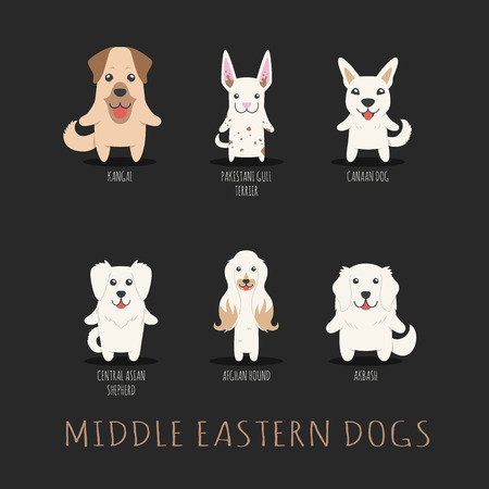 kangal: Set of middle eastern dogs Illustration