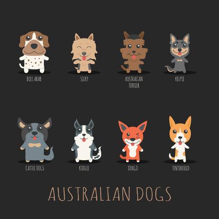 australian shepherd: Set of australian dogs ,  vector format Illustration