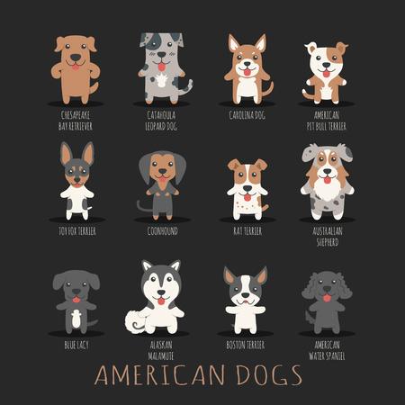 boston terrier: Set of american dogs Illustration