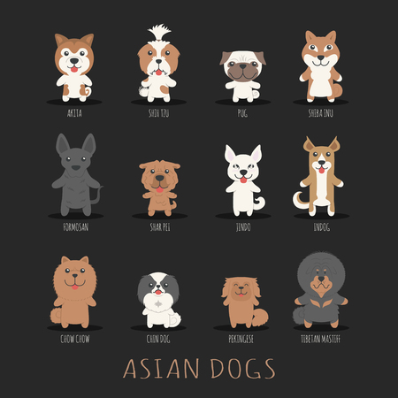 shih tzu: Set of asian dogs