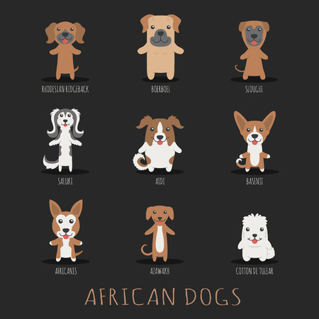 boerboel dog: Set of african dogs