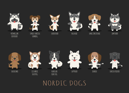 puppy: Set of various type of dog