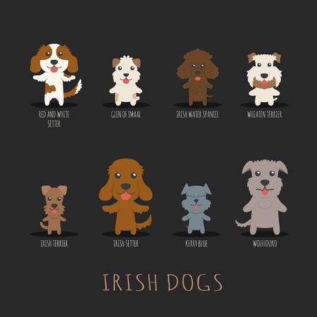 kerry blue terrier: Set of Irish dogs