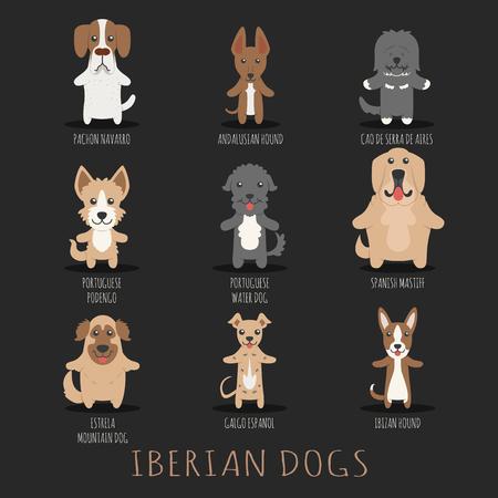 iberian: Set di cani iberici Vettoriali