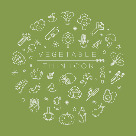 ravizzone: Vegetables and fruits thin icons ,vector format