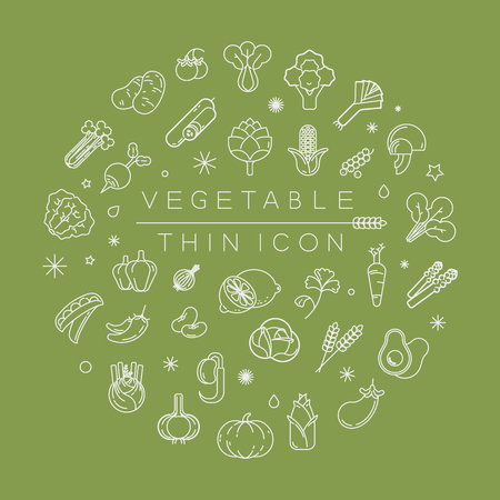 Vegetables and fruits thin icons , eps10 vector format