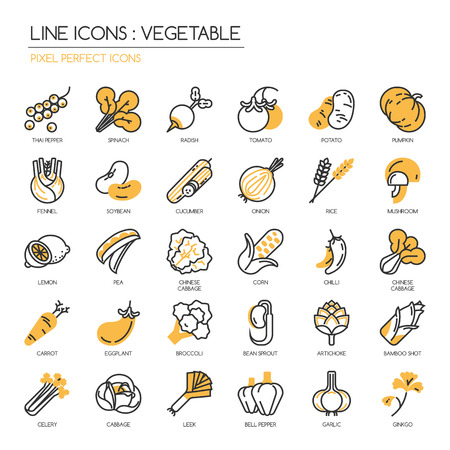 Vegetable , thin line icons set ,pixel perfect icon Иллюстрация