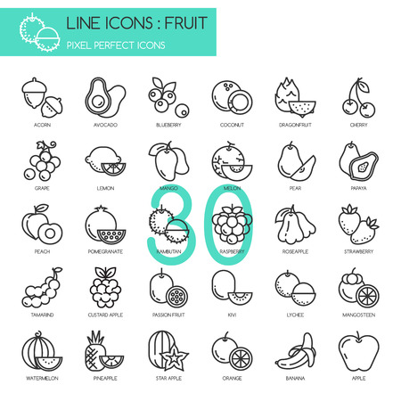 Fruit , thin line icons set ,pixel perfect icon 向量圖像