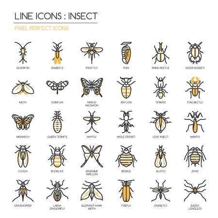pupa: Insect , thin line icons set ,pixel perfect icon