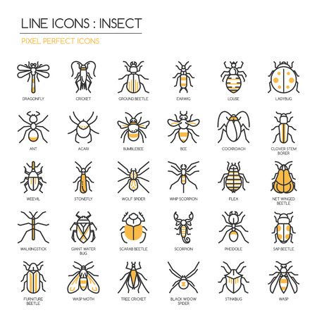 sap: Insect , thin line icons set ,pixel perfect icon