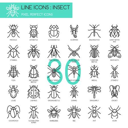 insecto: Insecto, iconos de líneas delgadas set, icono perfecto de píxeles