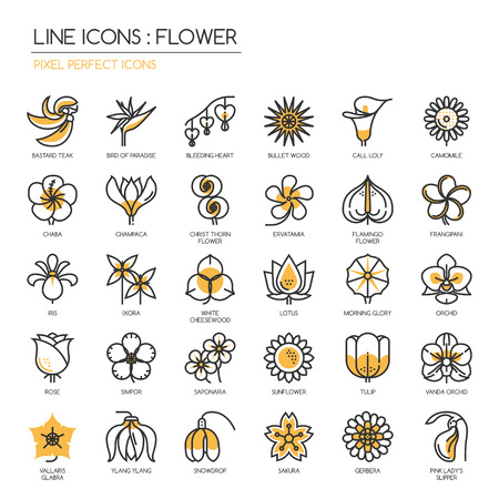 Flower, thin line icons set , Pixel perfect icons Çizim