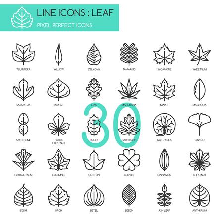 잎, 얇은 라인 세트, 완벽한 픽셀 아이콘 아이콘