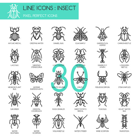 pixel perfect: Insect , thin line icons set ,pixel perfect icon