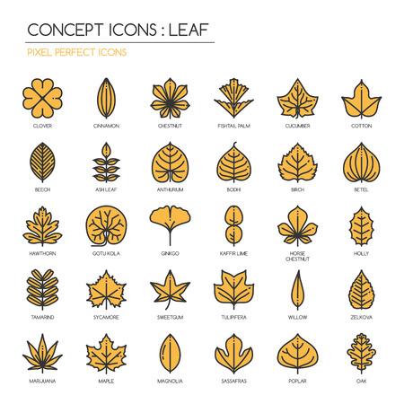 Hoja, línea delgada fijadas iconos, icono de píxel perfecta
