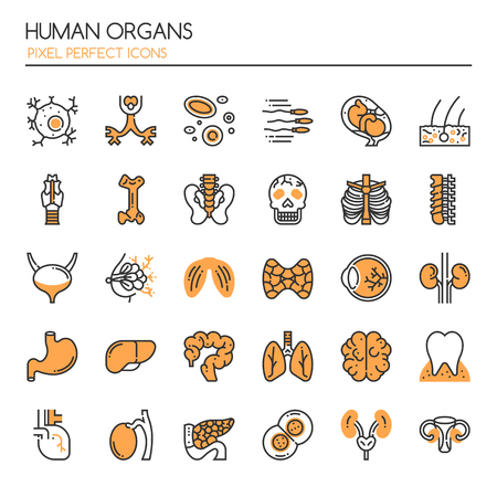 Human Organs.