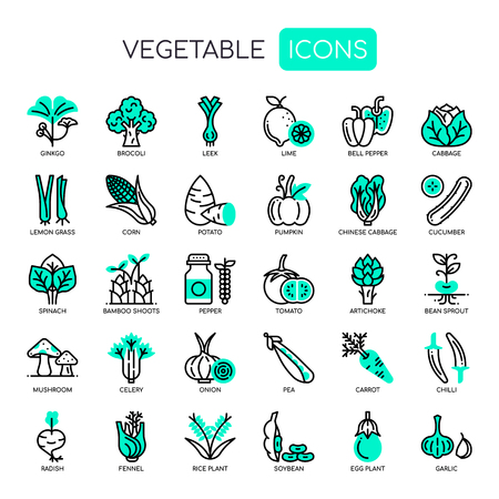 Vegetable  Thin Line and Pixel Perfect Icons Vector illustration.