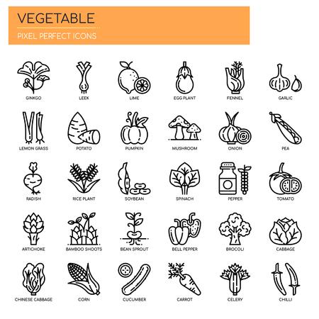 Plantaardige dunne lijn en Pixel Perfect Icons Vector illustratie.