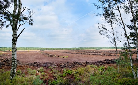 turf: Peat industry, a turf extraction in Latvia.