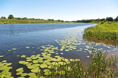 Wild river the Venta in Latvia. Stockfoto