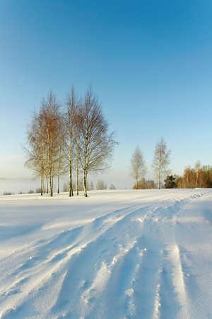 snowbound: Snowbound country road in a winter season