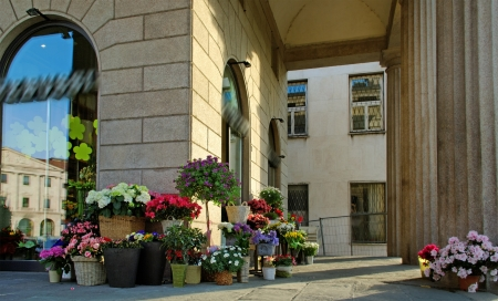 Flower shop on the Bergamo street, Italy