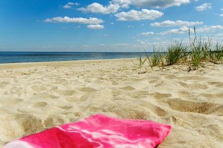 Feuille rouge sur le sable à la mer Banque d'images - 15182004