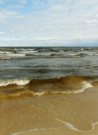 granola: Natural del mar B�ltico con gran ola