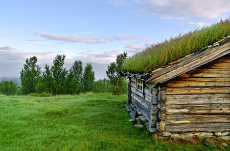 Part of a small house with growing grass on the roof  photo