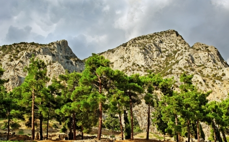 Delphi landscape with trees and mountains  Stock Photo - 16330820