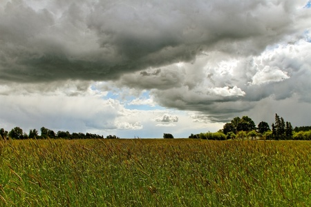 Big clouds above green wheat s field  photo