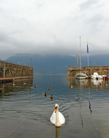 Harbour on the Como lake, Italy  photo
