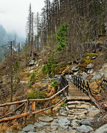 Slovakia mountains with footpath and wood bridge  photo