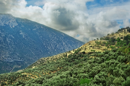Mountains at the Delphi district   photo