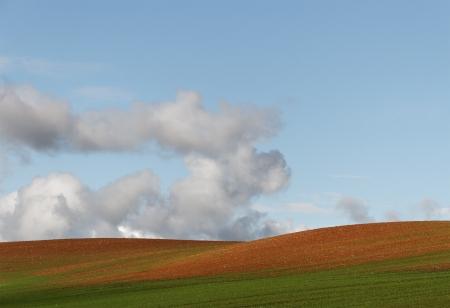 lightweight: Hill farmland wiht light-weight clouds.