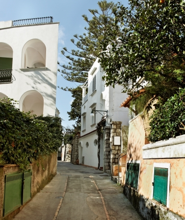 Capri street in a spring season. photo