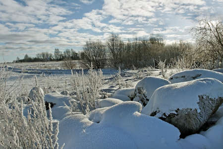 Country landscape in a winter season. photo