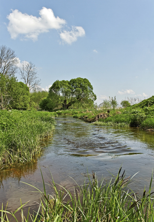 Small river in a spring time. photo