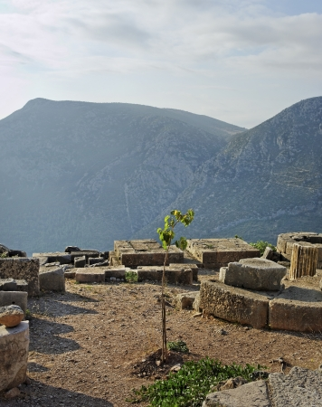 Heavenly ancient ruins in Delphi, Greece. photo